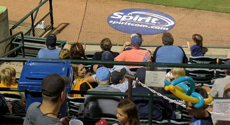 bill murray riverdogs baseball game